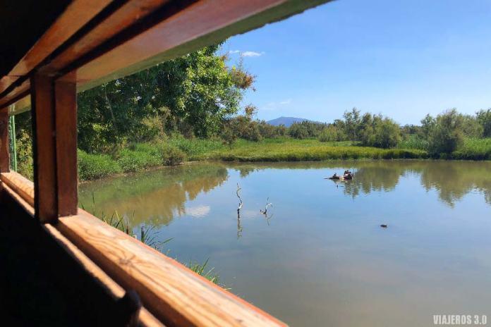 Puestos de observación en el Parque Natural de Aiguamolls.