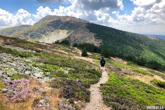 Subida al pico San Millán, la cima más alta de Burgos