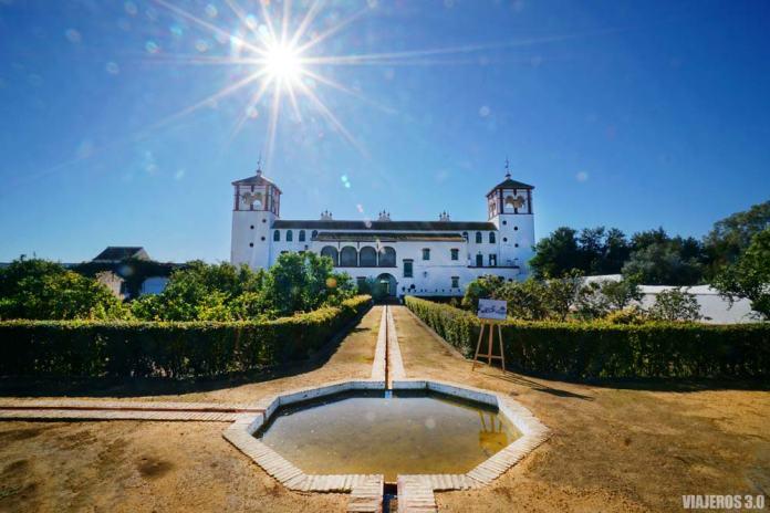Hacienda Guzman, visita de oleoturismo en Sevilla