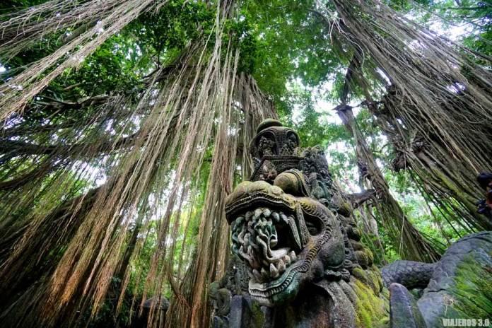 Monkey Forest, qué hacer y qué ver en Ubud
