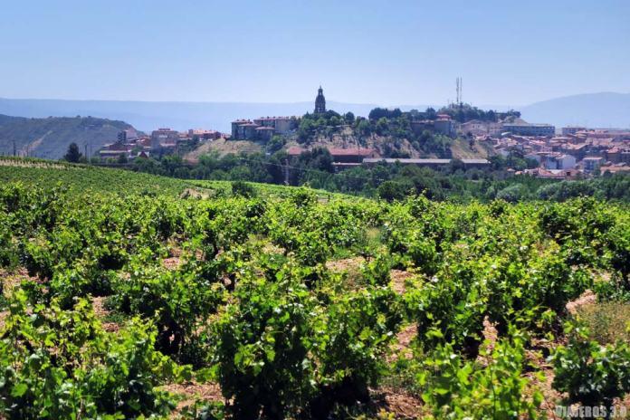 Imprescindibles que ver en Haro, La Rioja