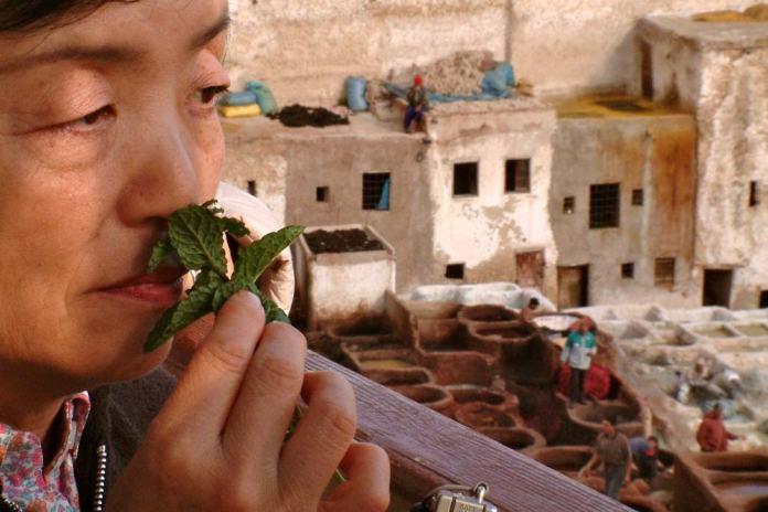 Cómo ir del aeropuerto de Fez al centro de la Medina