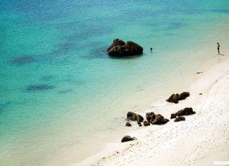 Qué ver en Setúbal, playas de la Arrábida
