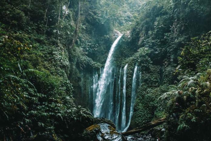 Cascada de Tiu Kelep, qué ver en Lombok en 4 días