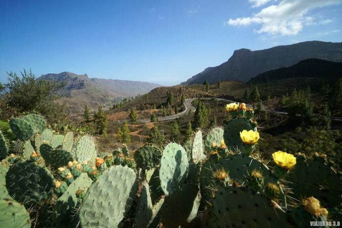 Roadtrip por Gran Canaria en una semana