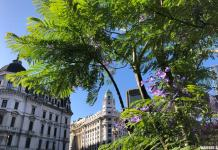 Un free tour en Buenos Aires.