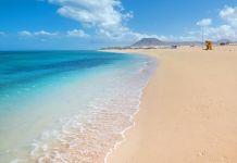 Fuerteventura y sus playas ¿Qué isla canaria visitar?