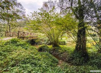 Sendas verdes de Gijón, senda del río Ñora