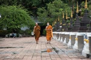 monjes chiang mai - monk chat