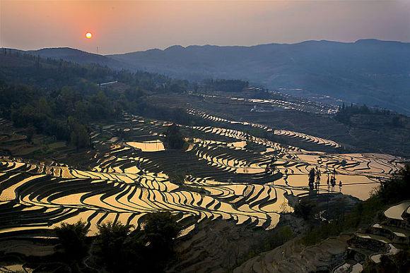 Puesta de sol en las Terrazas de Yunnan