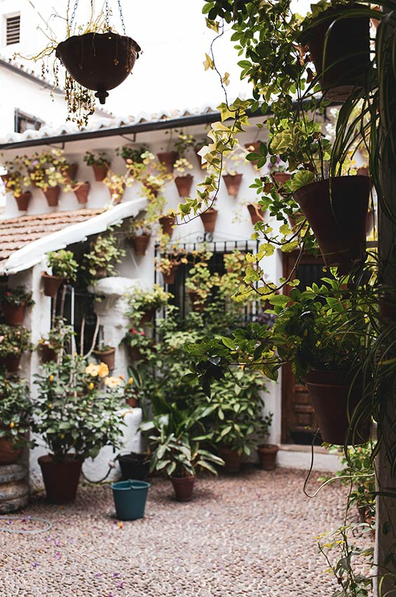 patios cordobeses
