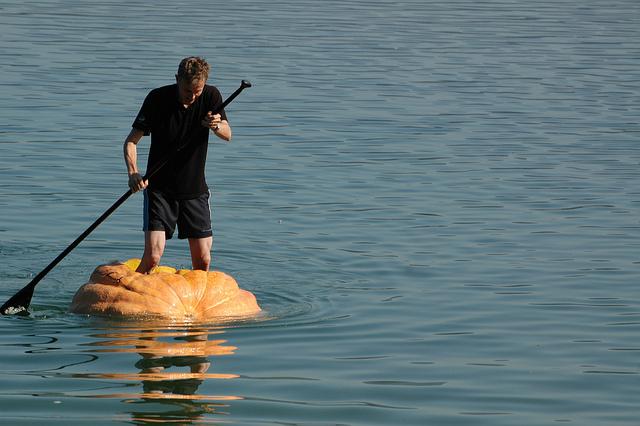 Jucker Farmart - La fiesta de las calabazas - Barco, 2011