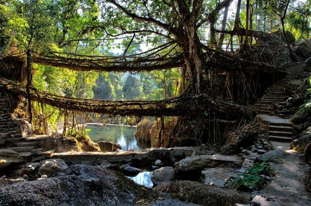 Meghalaya India