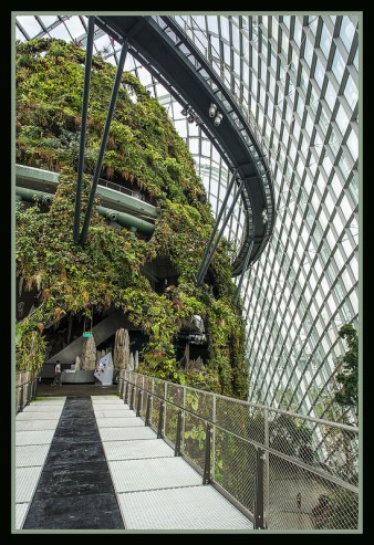 Gardens by the Marina Bay - Dome Clouds 03