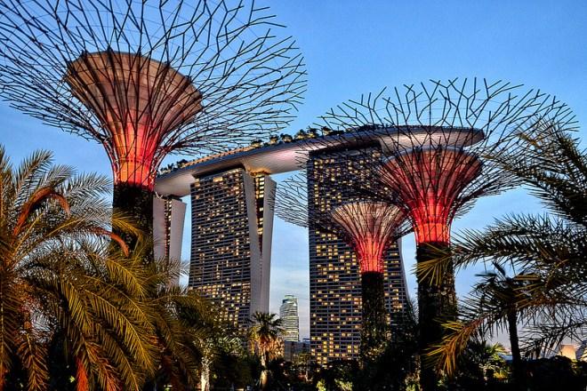 Súper árboles - Singapur