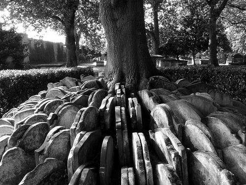 Gravestones around a tree (Hardy Tree), St Pancras Old Church, London