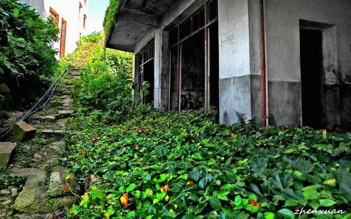Gouqi island abandoned village - 3