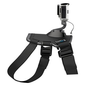 GoPro Fetch (Dog Harness) 13