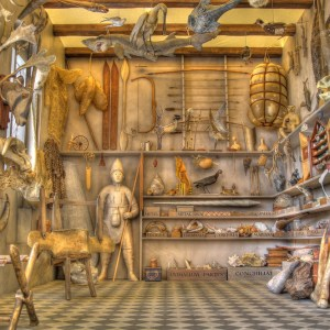 All Things Strange and Beautiful (Museum Wormianum ), Geological Museum, Copenhagen