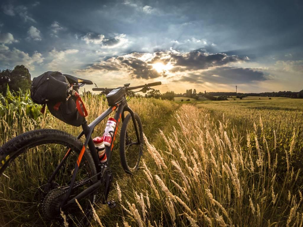 Análisis y guías de equipo y bicicletas de montaña