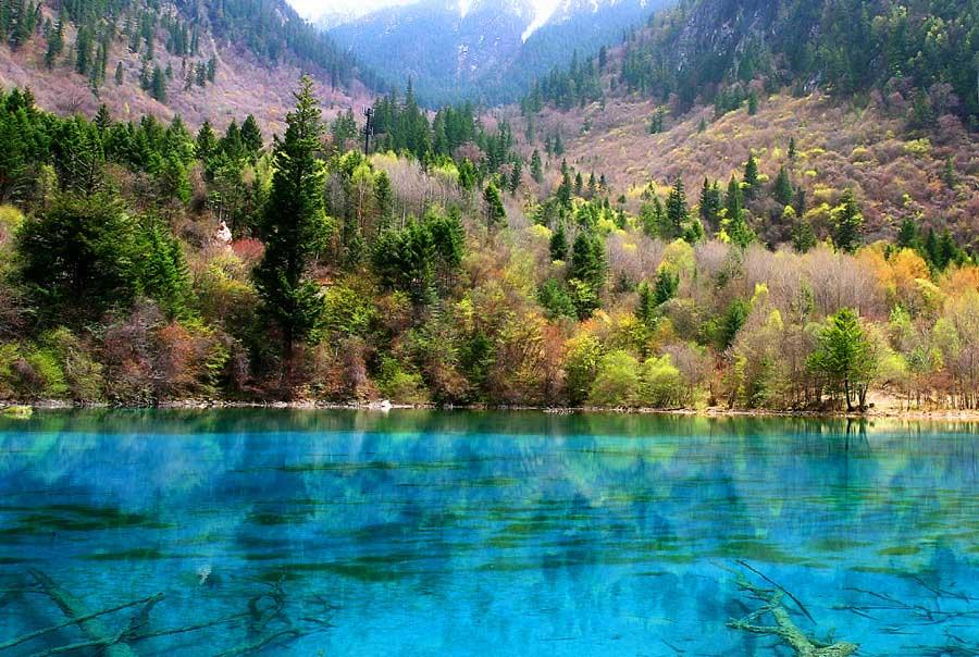 Five Flowers Lake