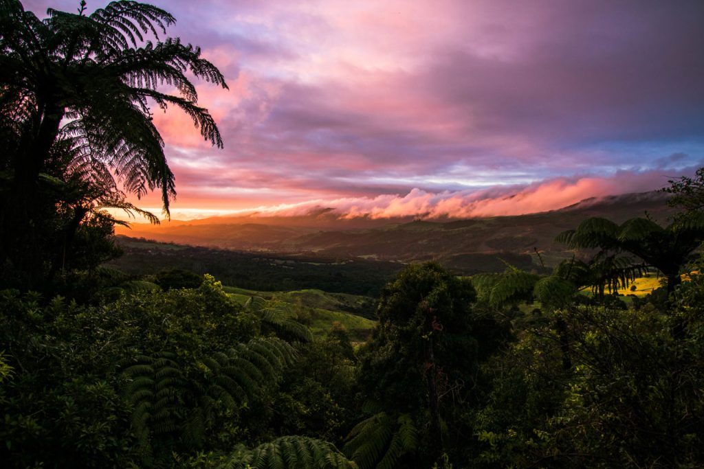 Viajar a Nueva Zelanda turismo