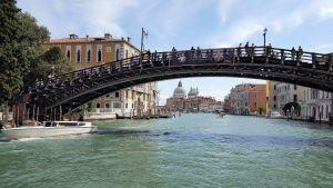 Puente de la Academia de Venecia