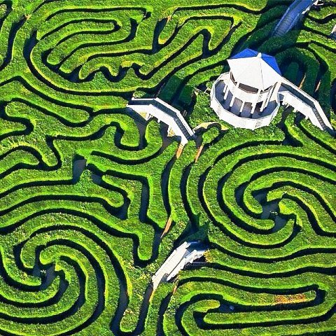 Visit-Longleat-Safari-Park-Maze-United-Kingdom