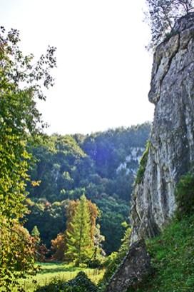 Bosques roca acantilado Parque Nacional Ojców Polonia