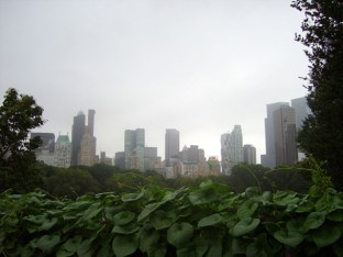 Hojas verdes rascacielos Manhattan Central Park Nueva York
