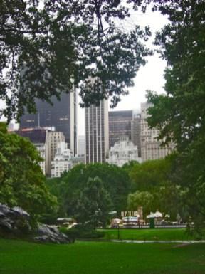 Césped rascacielos Central Park Nueva York
