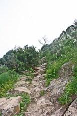 Subida Parque Natural Peñón de Ifach Calpe