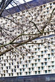 Das Haus von 500 Windows spiegelt unsere Starke