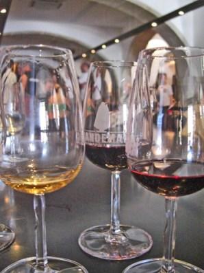 Degustación vinos Sandeman bodegas Oporto
