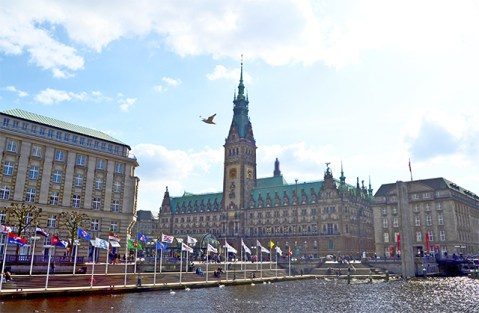 Panorámica lago pájaro ayuntamiento Aldstat Hamburgo