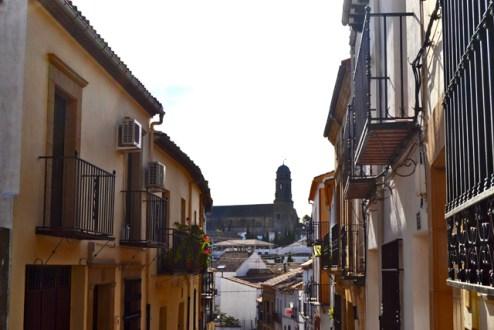 El corazon historico ensalza la catedral desde Los Arrabales
