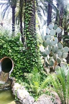 Jardín del Huerto del Capellán Elche