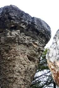 Detalle forma piedra Ciudad Encantada Cuenca