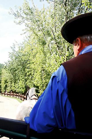 Jinete carruaje rancho hermanos Lazar gran llanura húngara Puszta