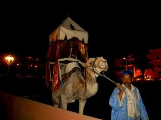 Camello paseo cuidador marroquí Chez Alí Marrakech