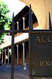 Verja puerta Sala Universidad Padua