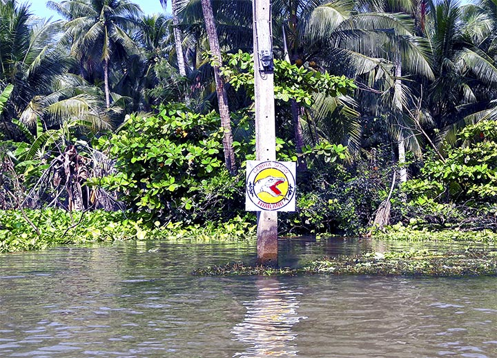 Cartel peligro reptiles aguas sucias canales Tailandia