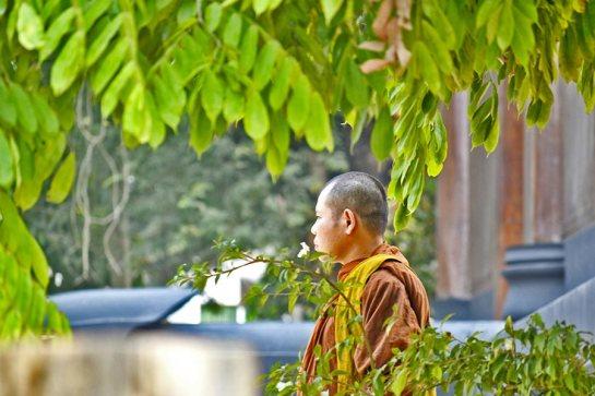 Buda perfil Templo Blanco Chiang Rai