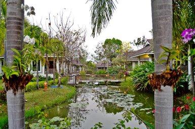 Charca vegetación complejo resort hotel Sukhothai