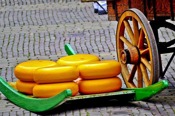 Queso Gouda Alkmaar carruaje