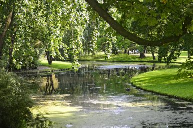 Río parque vegetación centro Rotterdam