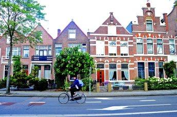 Calle árboles casas típicas Alkmaar Países Bajos