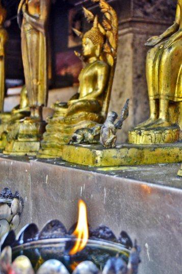 Llama vela buda templo Doi Suthep