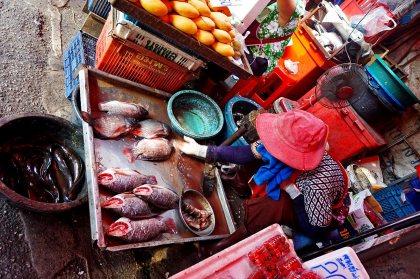 Puesto pescado vivo mercado necturno Chiang Mai