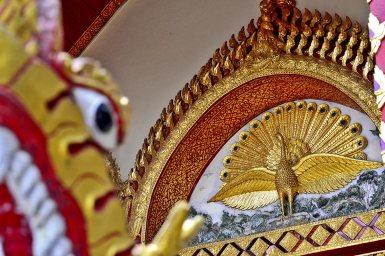Pavo real dorado puerta Doi Suthep
